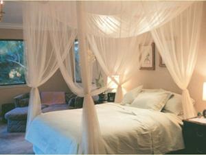 かや mosquito net